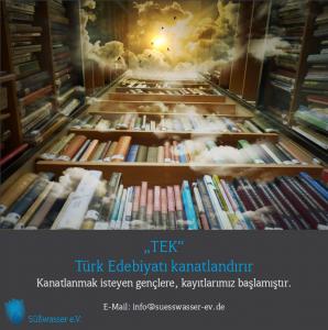 flyer_tek-v6